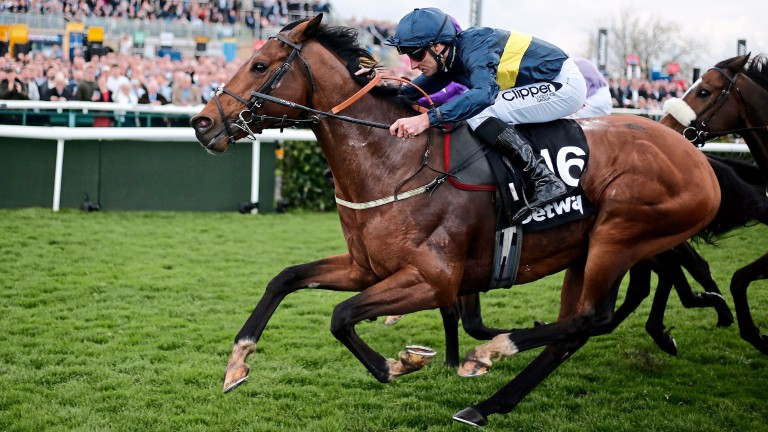 Bravery, pictured winning the Lincoln under Danny Tudhope, is going to have to step up in his Group-race bid, says trainer David O'Meara