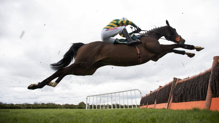 At full stretch: a super shot of former Champion Hurdle winner Jezki taking a flight in the 2m conditions event