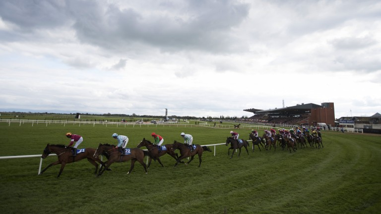 Heart of the action: the Irish Grand National field head away from the stands at the end of the first circuit