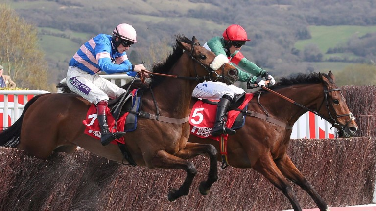 Voix D'Eau (right) and Art Mauresque renew rivalry at Cheltenham on Wednesday
