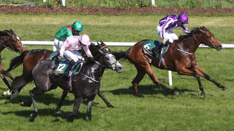 Winter (pink) chases home Hydrangea in the 1,000 Guineas Trial at Leopardstown