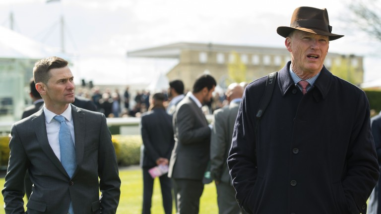 Havlin has been at John Gosden's side at racecourses throughout the summer