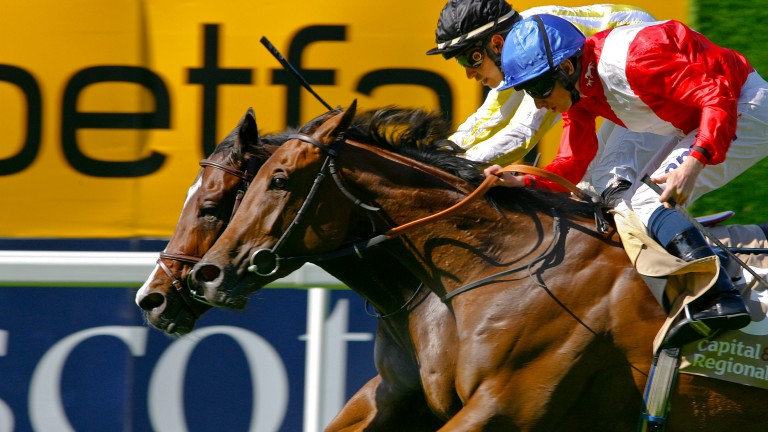 Ladyship (near side): Qaaraat is her first foal