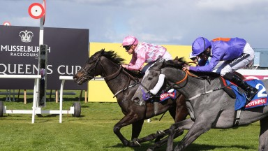 CULLINGWORTH and Sammy Jo Bell win at Musselburgh 15/4/17Photograph by Grossick Racing Photography 0771 046 1723