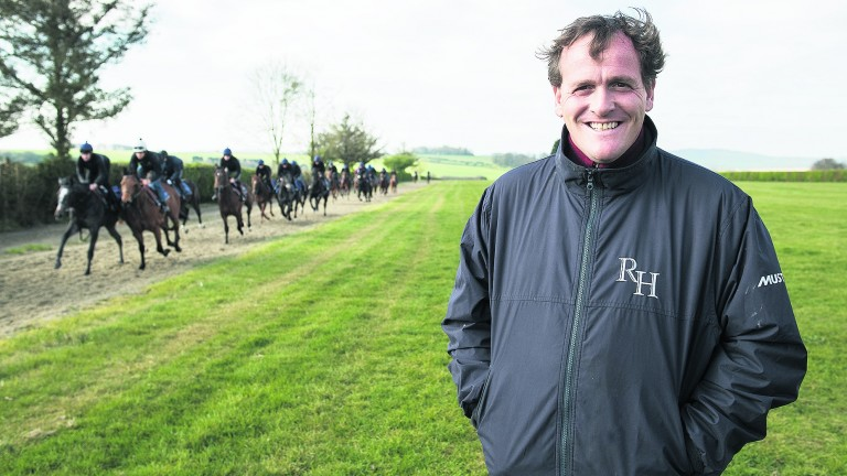 Richard Hannon: has a Coventry contender with De Bruyne Horse