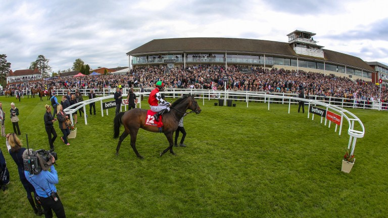 Lingfield: a record crowd on All Weather Finals Day contributed to terrific Easter attendances