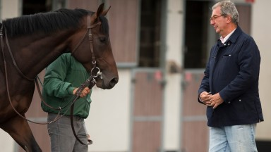 """Jean-Claude Rouget and Almanzor, who was affected by fever but not the """"wobbling"""" symptoms of others in the same barn"""
