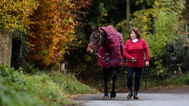Sarah Bradstock with Cheltenham Gold Cup winner CONEYGREE  prepares for his run in the £200,000 Betfair Chase at Haydock Park on Saturday with his normal early morning stroll through the village of Letcombe Bassett.  14/11/16Photograph by Grossick Racing