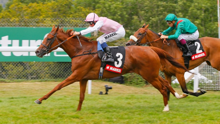Sultanina: daughter of New Approach, who was born and raised at Normandie, lands the Nassau Stakes
