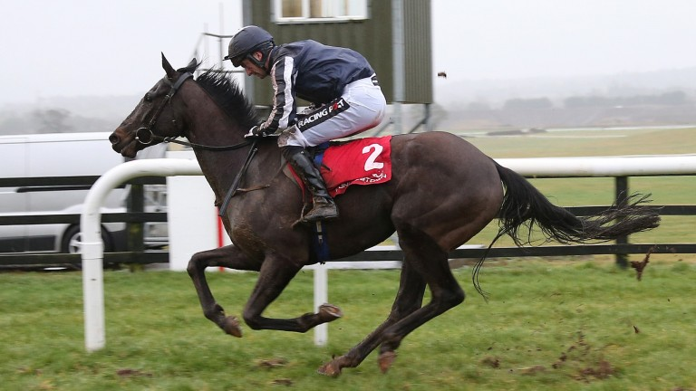 Early Doors: Punchestown bumper winner will return for the sale there next week
