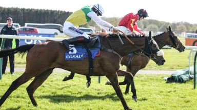 Vicente had Cogry's measure all the way up the Ayr straight and has most of the ingredients to be a major Grand National player