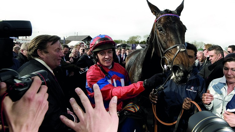 Sprinter Sacre: mobbed at Punchestown in 2013