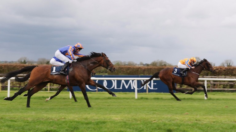 Torcedor and Colm O'Donoghue are not for catching in the Coolmore Vintage Crop Stakes at Navan on Sunday with Order Of St George (nearside) second and Twilight Payment third