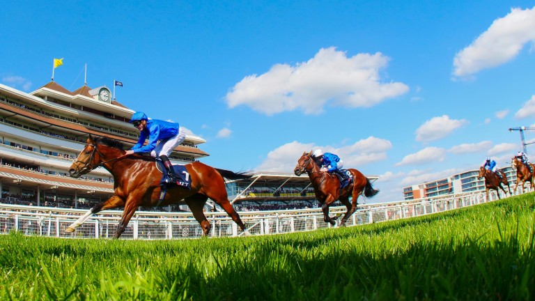 Newbury racecourse unveiled its preliminary results for 2016 on Tuesday
