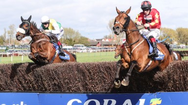 Vicente (left) top performance to pick himself off the Aintree turf to repeat his win in the Coral Scottish Grand National at Ayr on Saturday