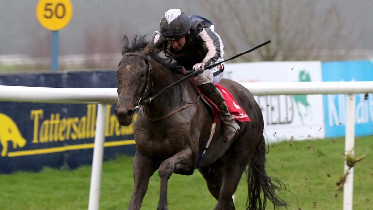 Early Doors winning on debut at Punchestown under Patrick Mullins