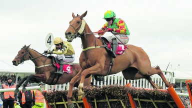 Lil Rockerfeller and Trevor Whelan put it up to Nichols Canyon (left) in the Stayers' Hurdle at Cheltenham