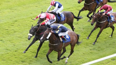 Stepper Point (nearside), beating Mecca's Angel at the Curragh 21 month ago, burst back to form under Martin Dwyer at Windsor on Monday