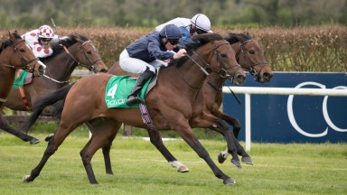 Washington DC just gets the better of Ardhoomey to land the Woodlands Stakes
