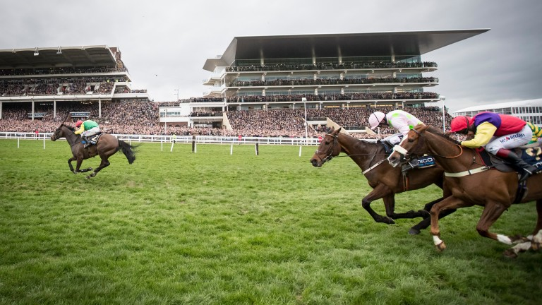 Sizing John clears away from Djakadam (second right) in the Cheltenham Gold Cup