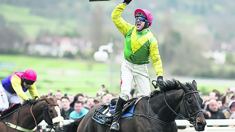 Sizing John, who beat all-comers in the Timico Gold Cup at Cheltenham