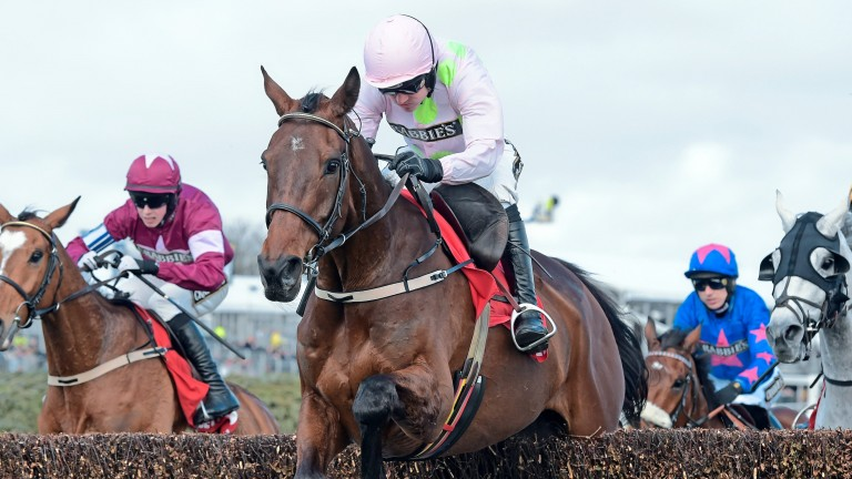 Djakadam: bids to give Willie Mullins a first win in the Grand Steeple-Chase de Paris