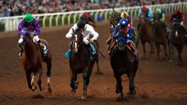 Toast Of New York: splits the winner Bayern and third-placed California Chrome in the 2014 Breeders' Cup Classic at Santa Anita