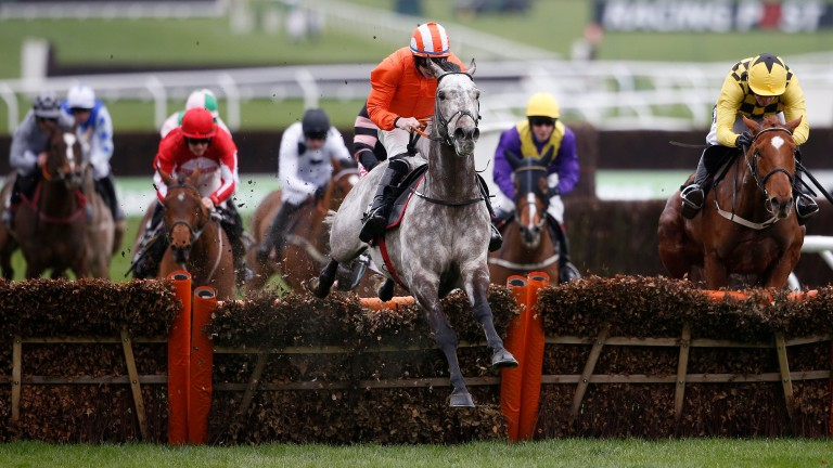 Labaik showed what he can do at Cheltenham