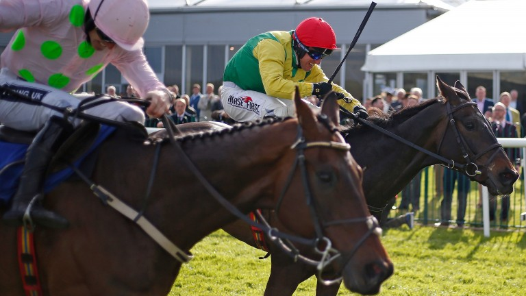 Sizing John (far side) edges out Djakadam in the Punchestown Gold Cup