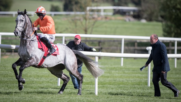 Labaik plants himself at the start with Jack Kennedy before the Champion Novice Hurdle