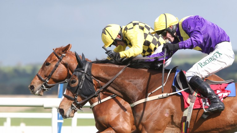 Cilaos Emery (near side) gets the better of stablemate Melon in the Champion Novice Hurdle