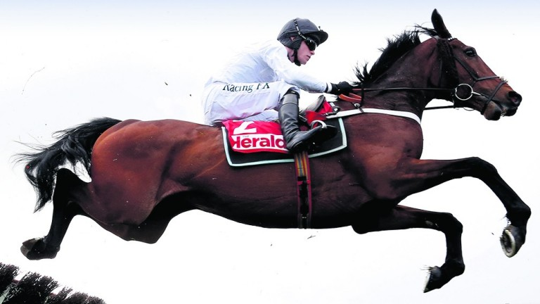 Brain Power: to be partnered by David Mullins over fences