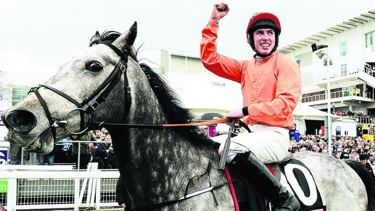 Jack Kennedy celebrates on Labaik after winning the Supreme Novices' Hurdle at Cheltenham