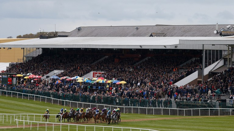 Racegoers pack the grandstand as the runners in the first on Thursday pass by