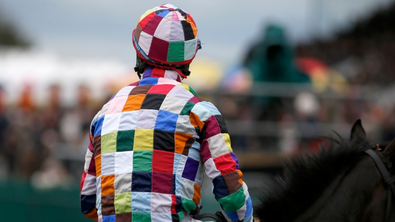 Robbie Power sports some dazzling colours, known as Crazy Quilt, on Thursday's first-race winner Bobabout
