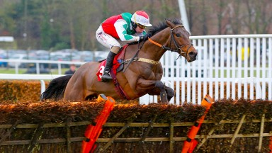 "Pain Au Chocolat - Wayne Hutchinson winners ofBetfred ""Supports Jack Berry House"" Juvenile Hurdle Sandown Park 31/1/2015©CranhamPhoto.com"