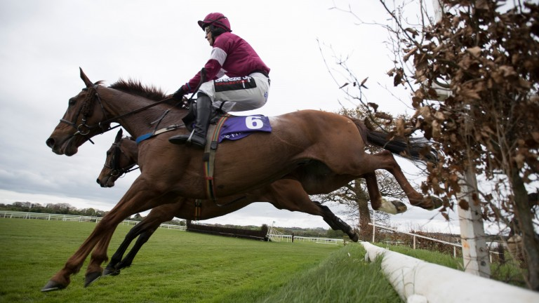 First Lieutenant (David Mullins) on the way to finishing third on his 50th and final start