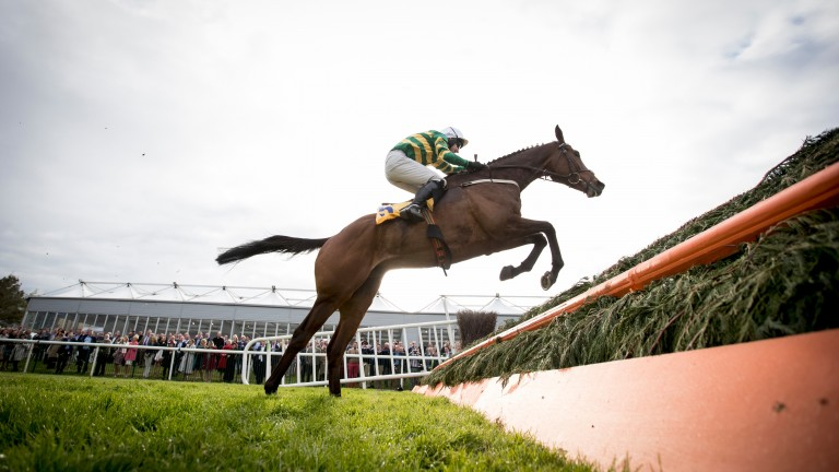Great Field puts in a mighty leap in the Ryanair Novice Chase