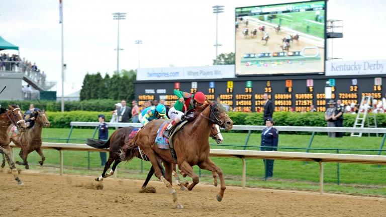 2011 Kentucky Derby winner Animal Kingdom has now supplied four winners worldwide
