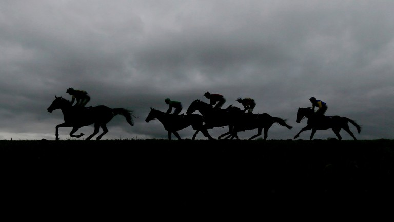 Runners race against the darkening skyline at Punchestown on Thursday