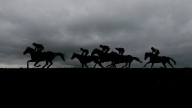 NAAS, IRELAND - APRIL 27: A general view as runners race across the skyline at Punchestown racecourse on April 27, 2017 in Naas, Ireland. (Photo by Alan Crowhurst/Getty Images)