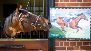 Frankel is a hit with the Royal Mail, but his apparent ubiquity finds less favour with reader Michelle Morgan