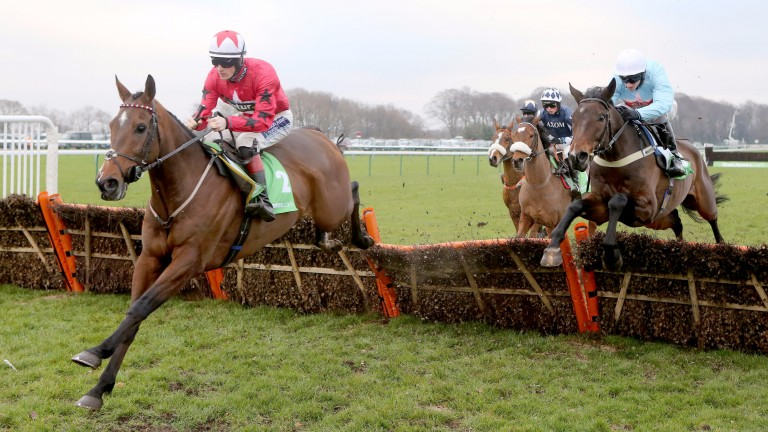 The New One - steps up in trip in hurdling feature