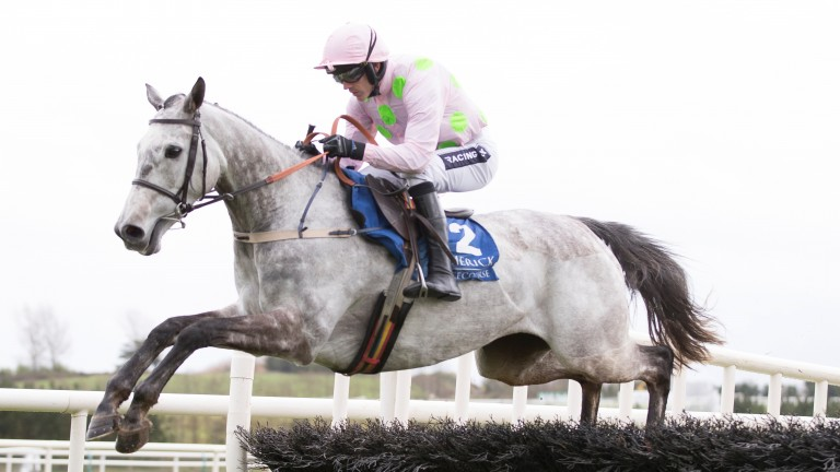 Karalee: provides Willie Mullins with an intriguing string to his bow
