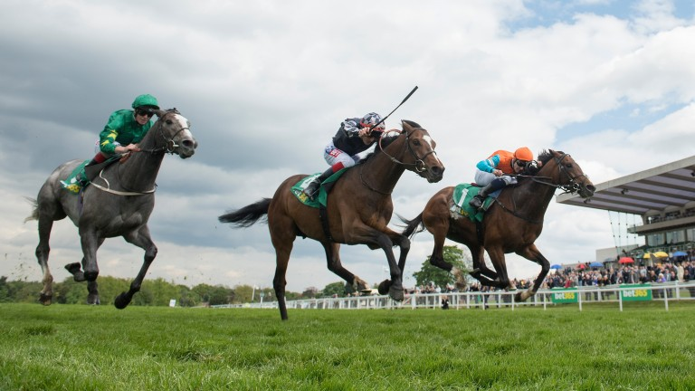 Cunco (right) beats Intern and fellow Frankel colt Frankuus (left) in the bet365 Classic Trial