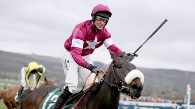 CHAMPAGNE CLASSIC Ridden by J. J. Slevin wins at Cheltenham 17/3/17Photograph by Grossick Racing Photography 0771 046 1723