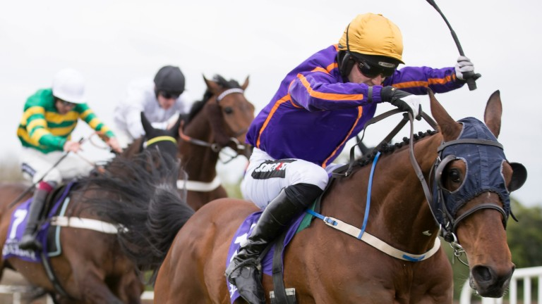 Wicklow Brave and Patrick Mullins take the last flight before winning the Punchestown Champion Hurdle
