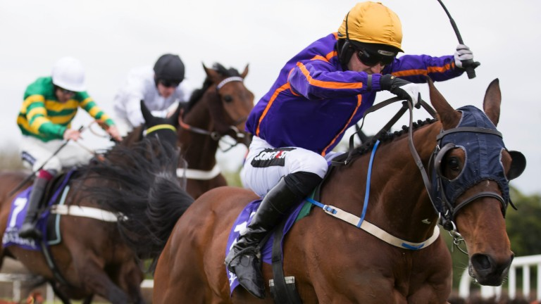 Leading the way: Wicklow Brave, ridden by Patrick Mullins, wins the Punchestown Champion Hurdle