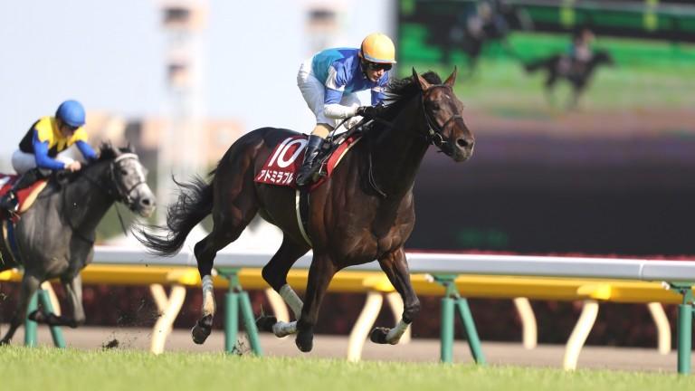 Admirable (Mirco Demuro) wins the Grade 2 Aoba Sho, the Japanese Derby Trial at Tokyo racecourse