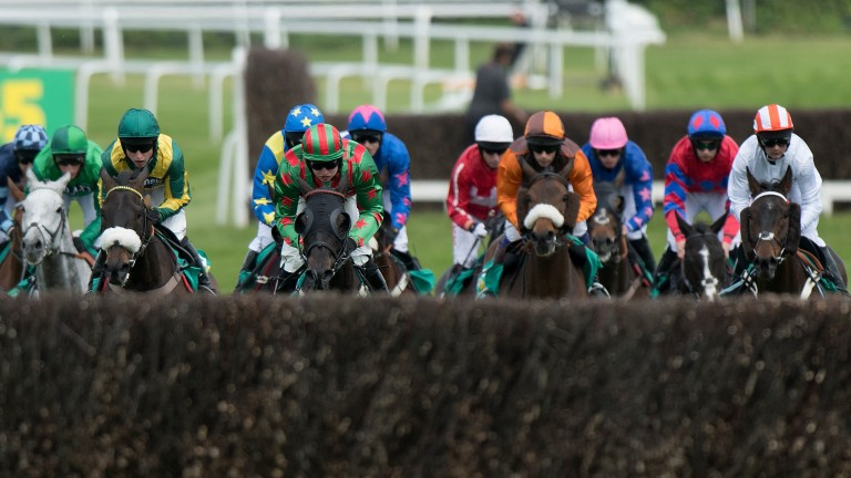 Henllan Harri (green and red) at the head of the field before winning Saturday's big race